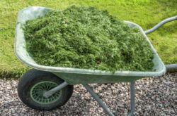 Органическое удобрение из травы