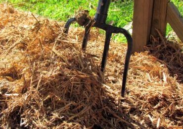 Мульчирование почвы: материалы для мульчирования