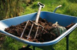Органические удобрения: навоз, компост, перегной и другие