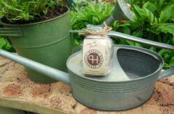 Компостный чай: что это такое и как его сделать