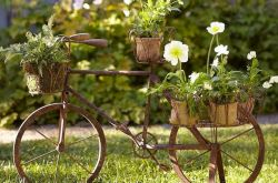 Идеи как украсить садовый участок своими руками. Фото, видео