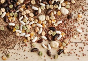 Замачивание семян перед посадкой огурцов, кабачков, тыквы и других культур