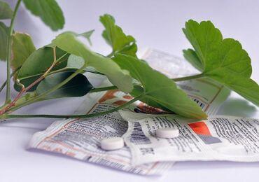 Янтарная кислота для комнатных растений: применение и обработка, свойства