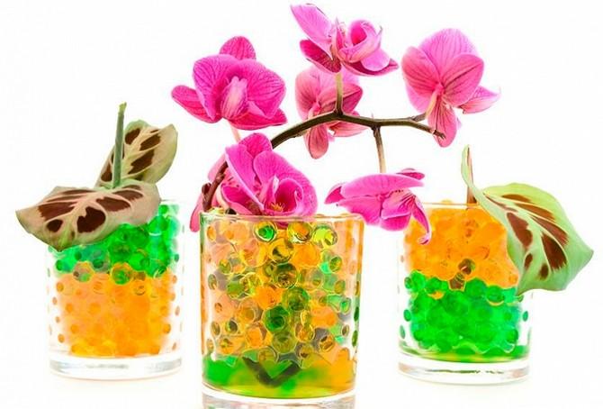 Живые цветы гидрогель подставка под цветы купить в рязани