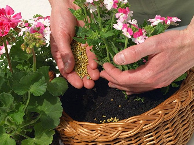 Удобрения и микроэлементы. Подкормка растений и цветов. Комплексное удобрение