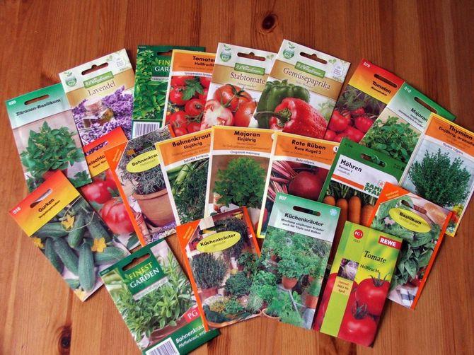 Как правильно купить семена цветов