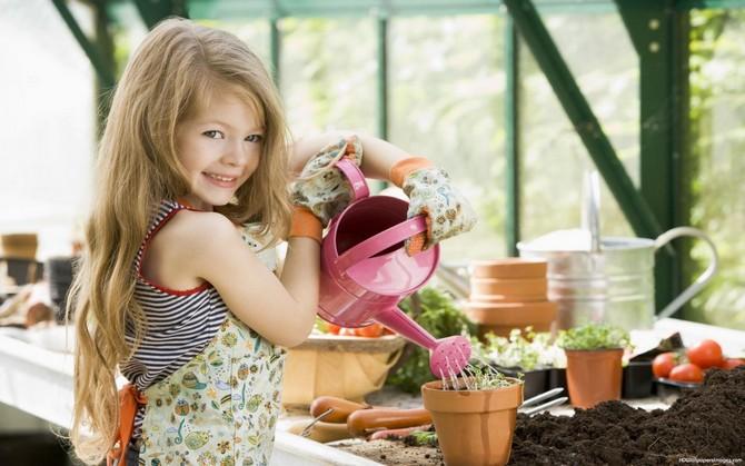 Размножение комнатных растений — очень занятное дело, которое не требует особых усилий