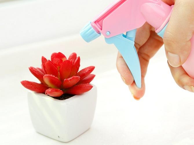 Опрыскивание растений и цветов для увлажнения