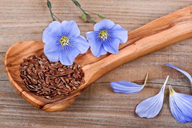 употреблять семена льна снижения холестерина