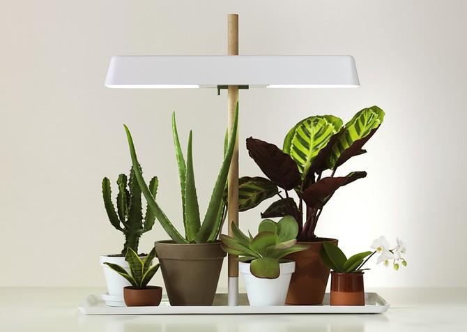 Свет для растений. Освещение цветов и растений