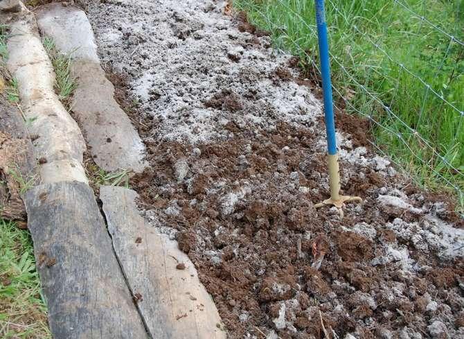 Зола как компонент компоста и органических грядок