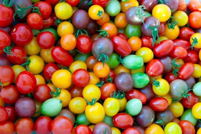 Одним из самых больших и значимых недостатков является сложность сбора качественных семян у культур с перекрестным опылением