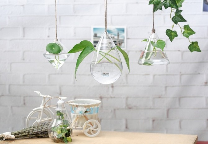 Гидропоника – это способ, при котором можно вырастить растения без применения земли, используя только специальный питательный раствор на водной основе