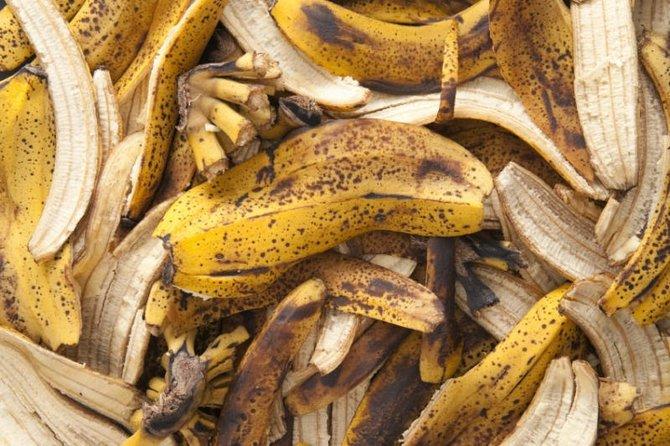 Банановая кожура в качестве удобрения
