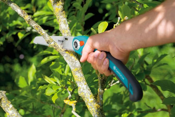 Если вам нужно обновить сад и вы решили подпилить много садовых деревьев, то в такой ситуации вам никак обойтись без садовой пилы либо садовой ножовки