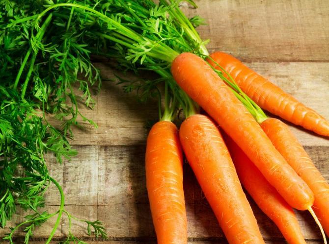 сорта моркови с высоким содержанием витаминов и каротина