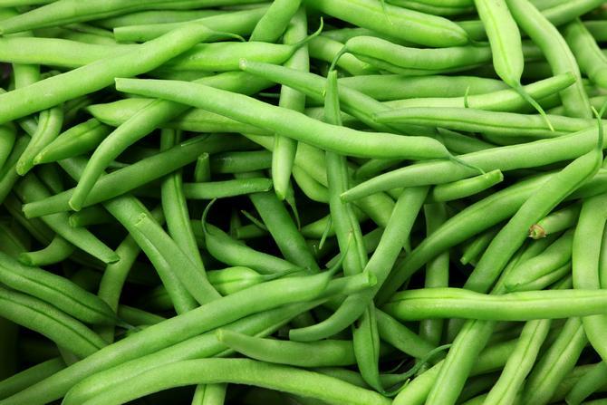Сбор урожая спаржевойфасоли