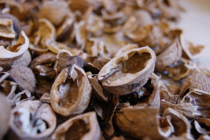 Не рекомендуется использование органических материалов, таких как скорлупа яиц, кора деревьев, ореховая скорлупа.