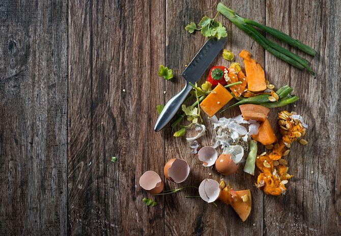 Пригодные и непригодные отходы для компоста