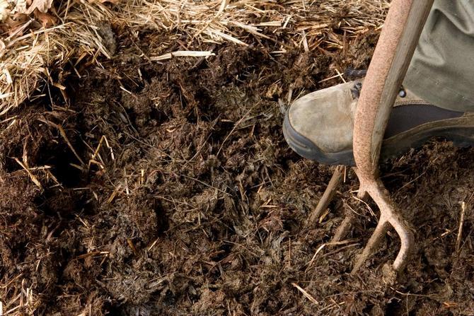 Перекапывание и рыхление почвы