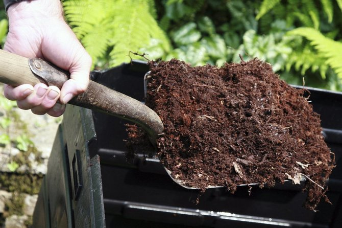 Как быстро сделать компост за 3-4 недели