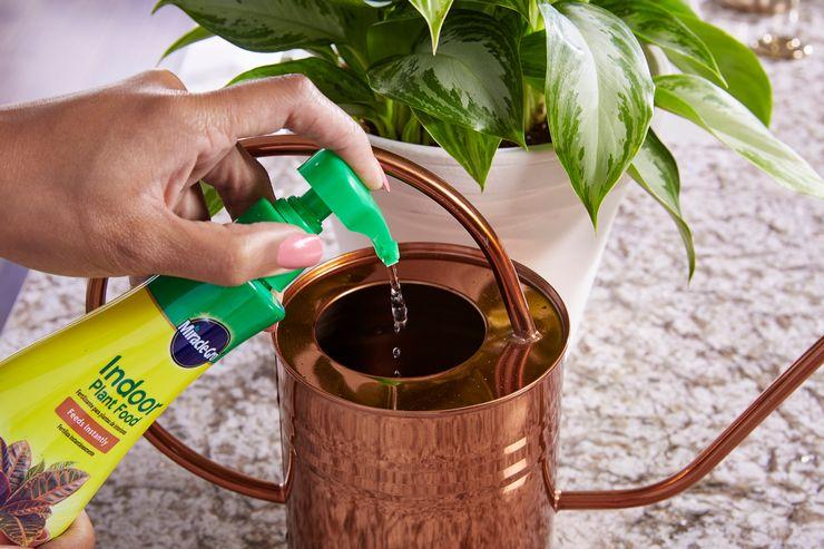 Готовые препараты для цветения растений