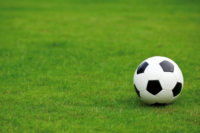 «Элитный» спортивный газон