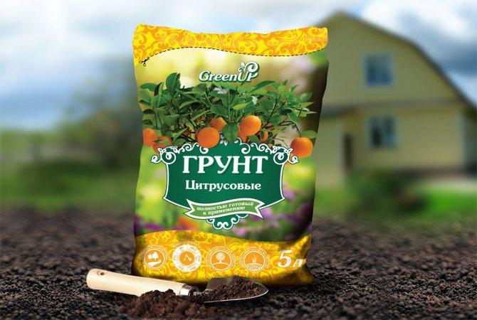 Состав грунтовой смеси для конкретных растений