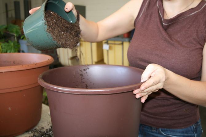 Составление грунта своими руками