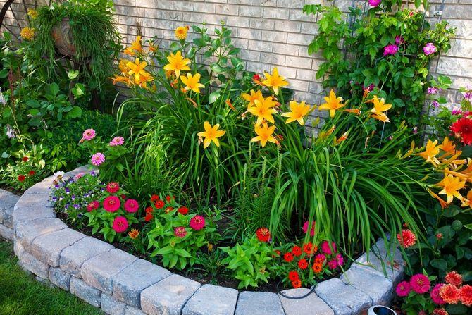 Украшение сада необычными растениями