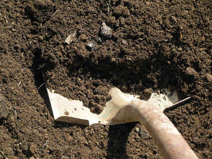 Перекопка также необходима для внесения в почву различных подкормок.