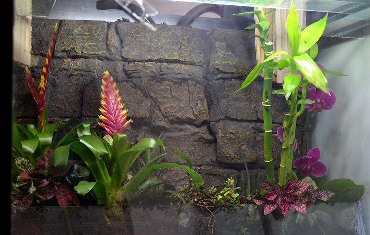 Посадка растений и элементы декора