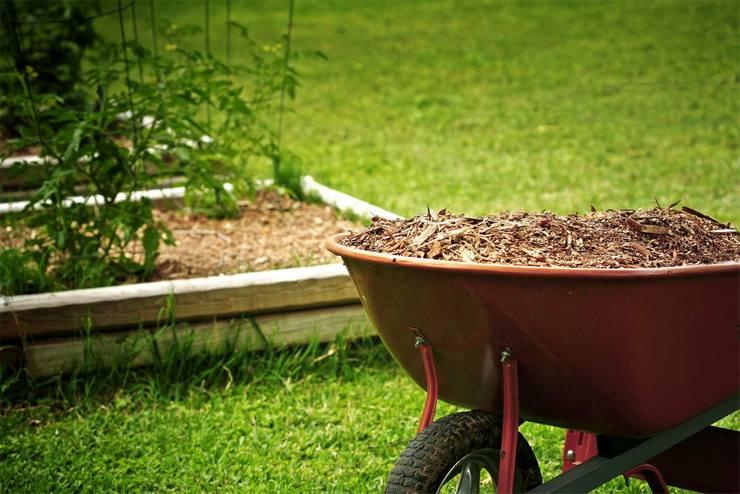 Как и чем мульчировать газон