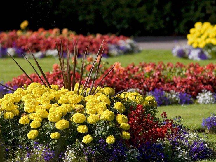 Растения на клумбе подбираются в соответствии со вкусом ее создателей