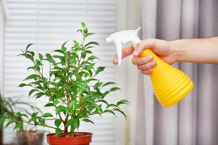 Циркон обладает хорошей совместимость практически со всеми средствами, которые помогают бороться с вредными насекомыми и различными заболеваниями
